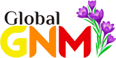 Global GNM